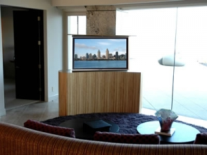 Cabinet Tronix Coast in zebra wood in the center of the room